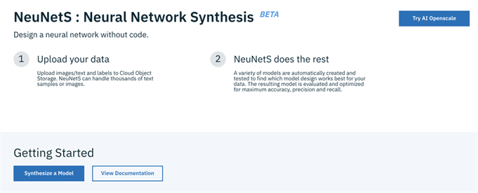 NeuNetS: Automating Neural Network Model Synthesis for Broader Adoption of AI