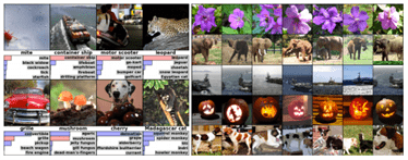 Example of Object Classification